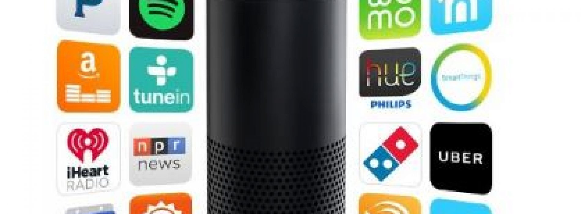Amazon's Alexa Turns One & Adds Voice Activated Enabling of Skills (Apps)